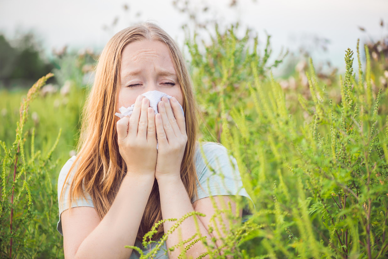 10 vecí, ktoré by alergici na palinu a ambróziu mali vedieť