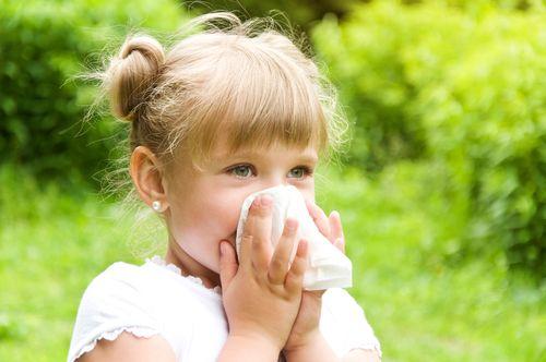 Alergická rinitída - alergická nádcha